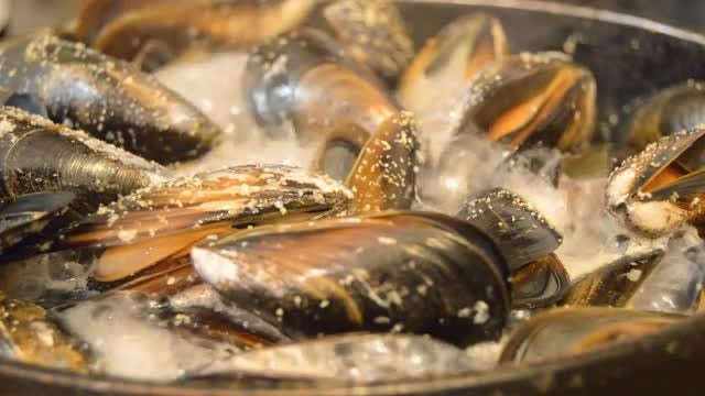 Large Pan With Boiling Mussels : Stock Video