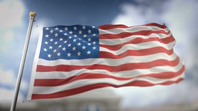 USA Flag Waving With Alpha Channel: Stock Motion Graphics