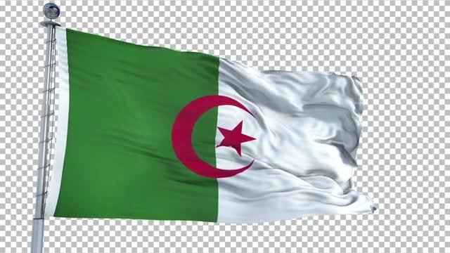 Algeria Flag Animation: Stock Motion Graphics