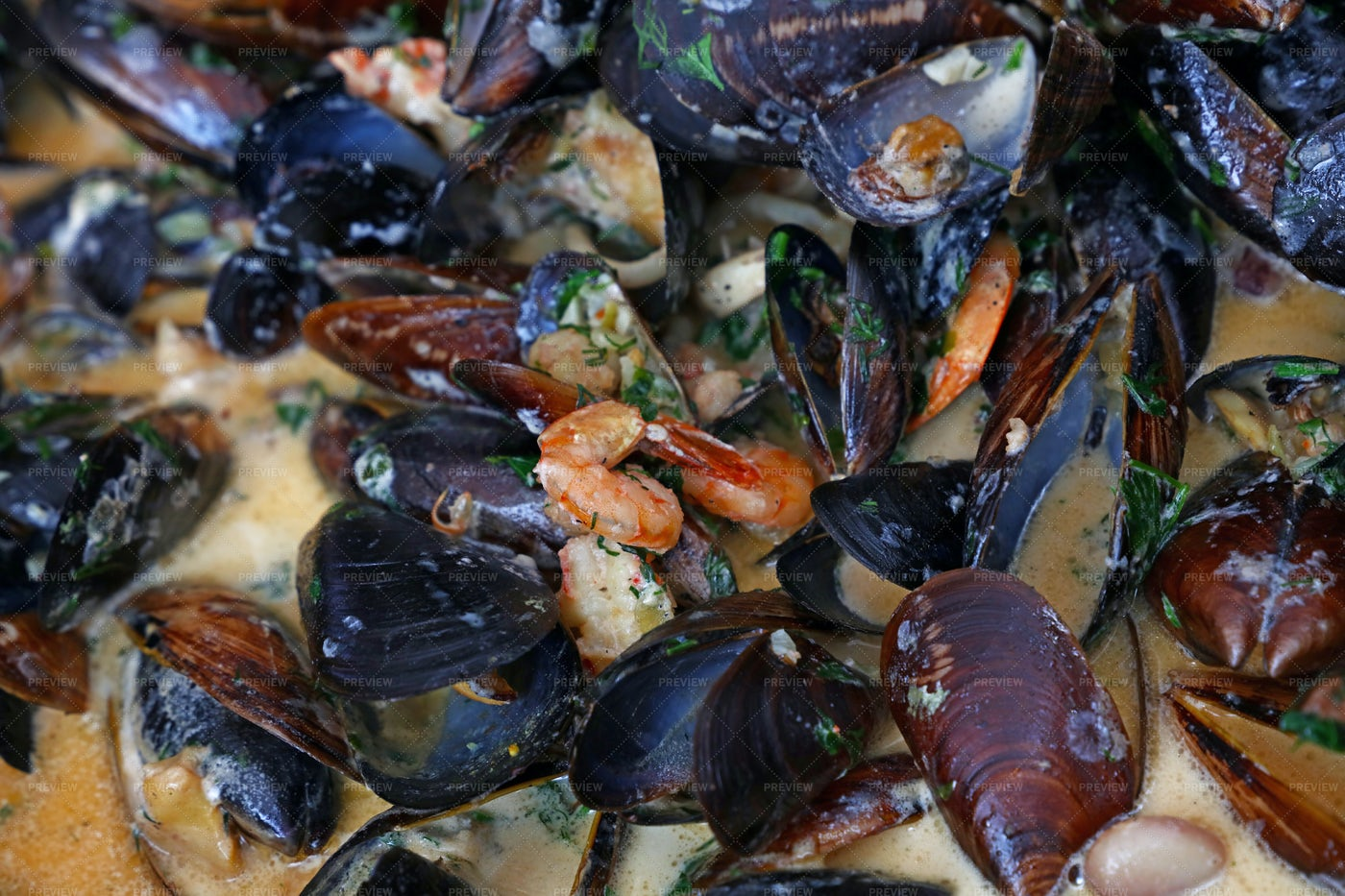 Steamed Roasted Mussels: Stock Photos