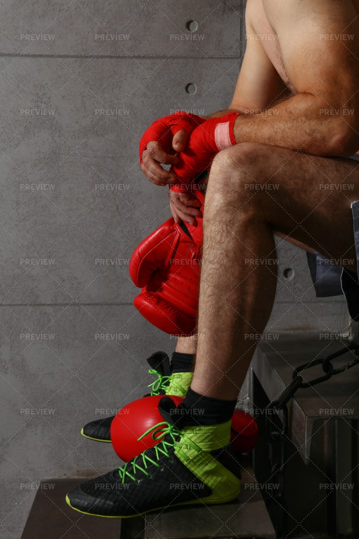 Boxer Rests On Steps: Stock Photos