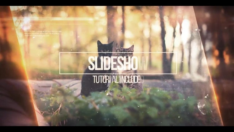 Slideshow and Interview: After Effects Templates