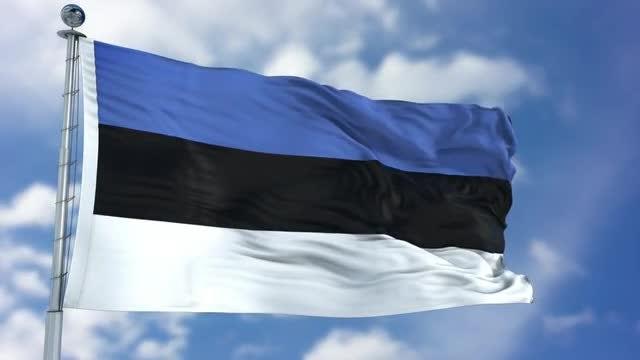 Estonia Flag Animation: Stock Motion Graphics