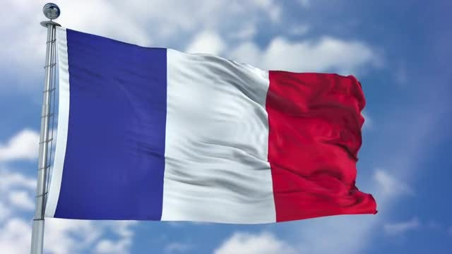 France Flag Animation: Stock Motion Graphics