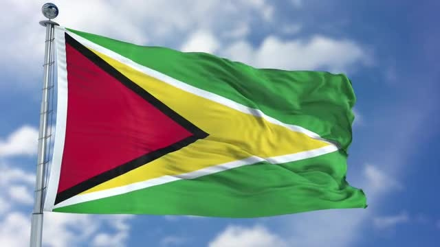 Guyana Flag Animation: Stock Motion Graphics
