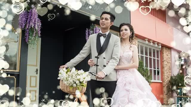 4 Wedding Frames Pack: Stock Motion Graphics
