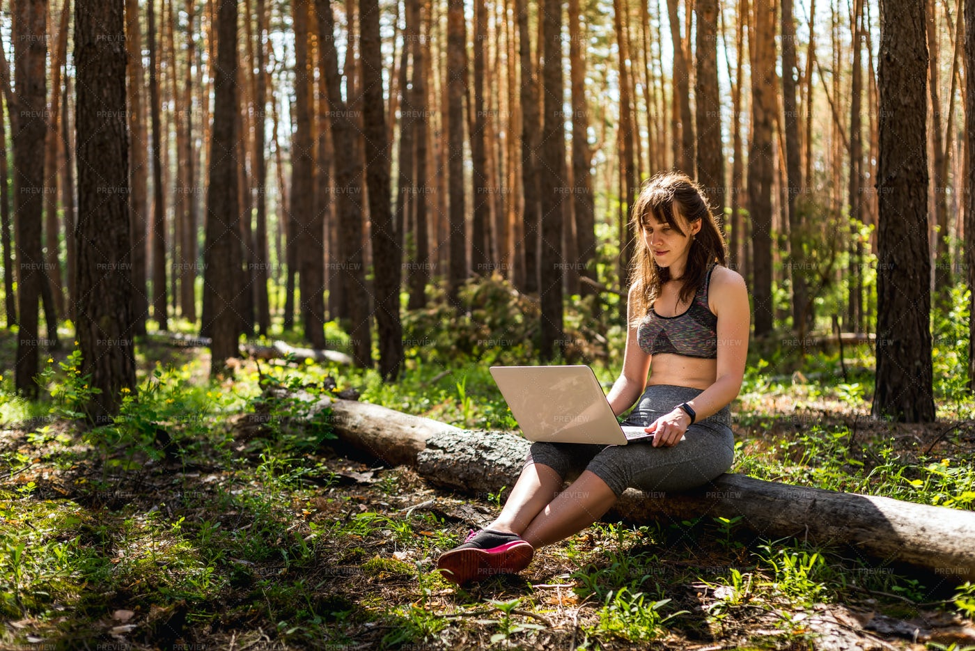 Working In Nature: Stock Photos