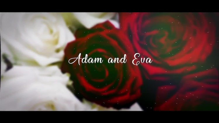 Cinematic Wedding Slideshow: After Effects Templates