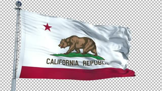 California Flag: Stock Motion Graphics