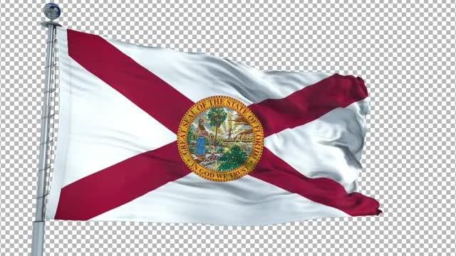 Florida Flag Animation: Stock Motion Graphics