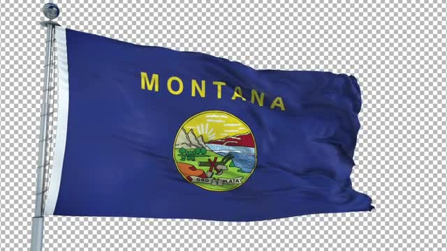 Montana Flag Animation: Stock Motion Graphics