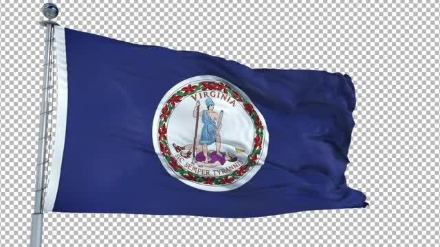 Virginia Flag: Stock Motion Graphics