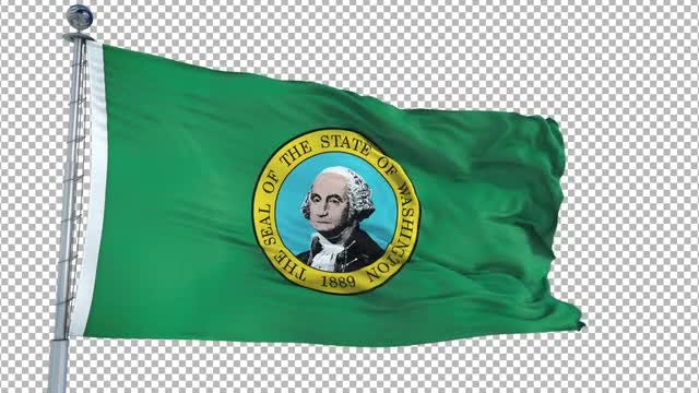 Washington Flag: Stock Motion Graphics