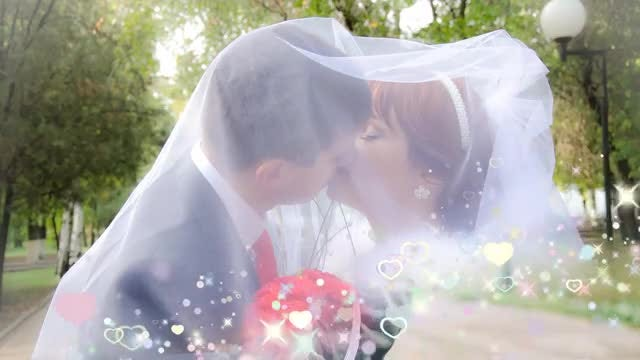 5 Wedding Transitions (Pack 2 - Multicolored): Stock Motion Graphics