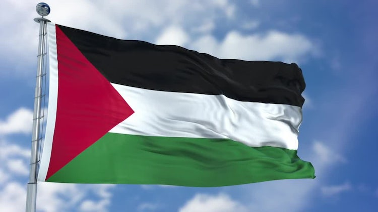 Palestine Flag Animation: Stock Motion Graphics