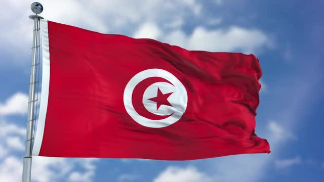 Tunisia Flag Animation: Stock Motion Graphics