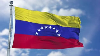 Venezuela Flag Animation: Stock Motion Graphics