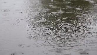Rain On The Street: Stock Video