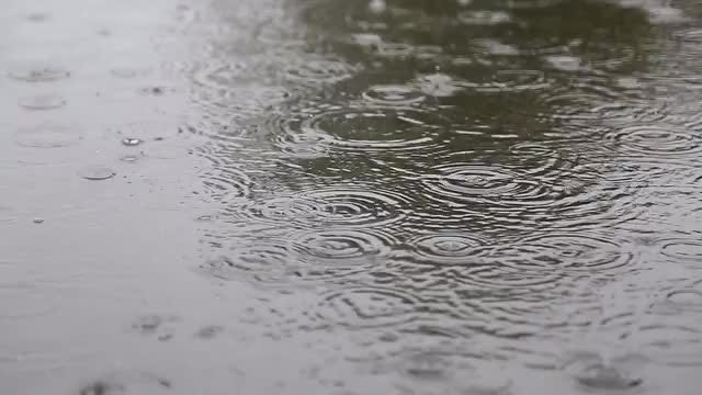 Rain On The Street: Stock Video