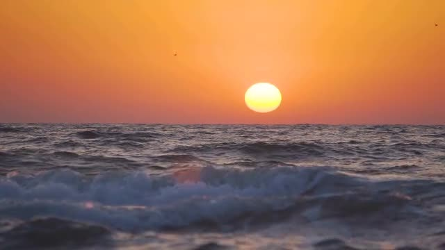 Sunset On The Sea Coast: Stock Video