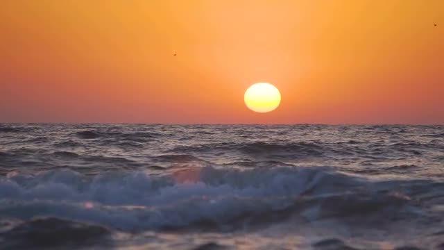 Sunset On The Sea Coast: Stock Video