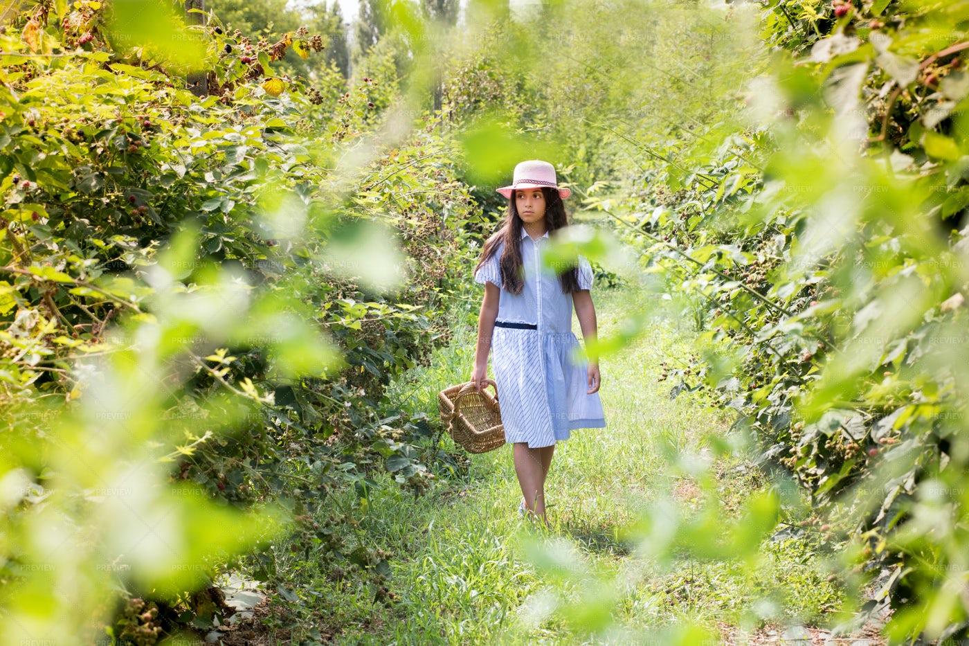 Girl Walking In Nature: Stock Photos