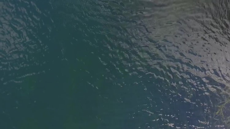Aerial View Of Calm Ocean: Stock Video