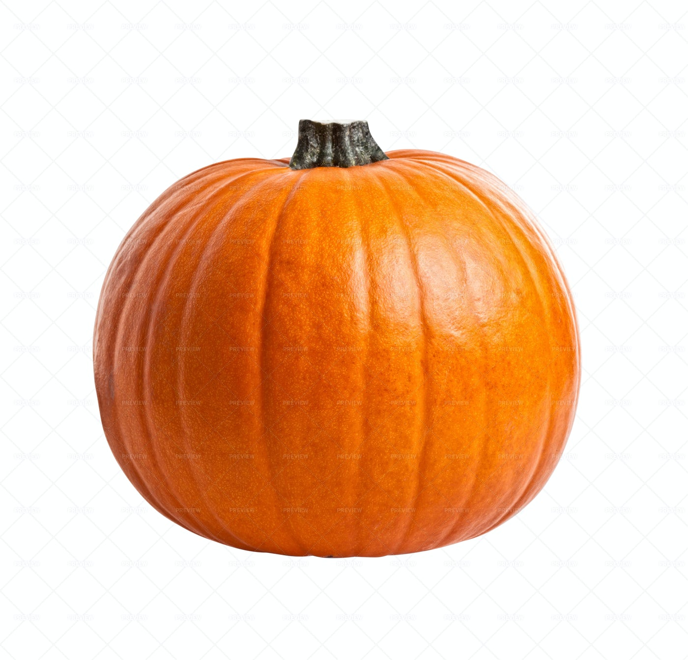 Pumpkin Isolated On White: Stock Photos