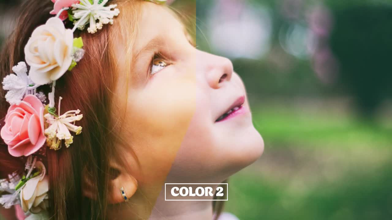 Two-Toned Bokeh Background Overlays - Motion Graphics 74720 - Free