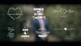 Fun Wedding Titles: Premiere Pro Templates
