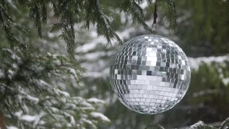 Mirror Ball  Sparkles In Forest : Stock Video
