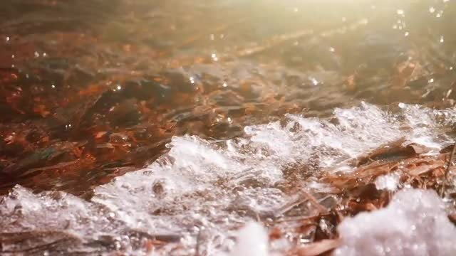 Spring Stream In the Spring: Stock Video