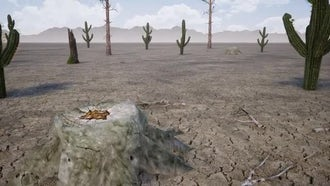 Dry Scorched Land: Stock Motion Graphics