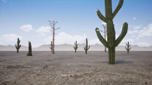 The Desert Dry: Stock Motion Graphics