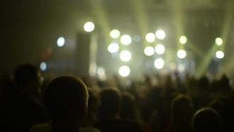 Crowd Partying At A Concert: Stock Footage