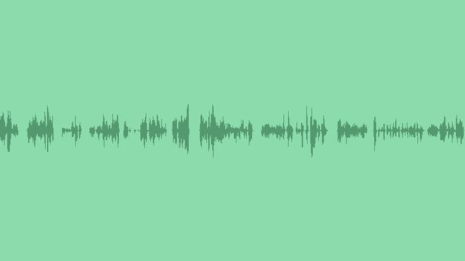 Seagulls: Sound Effects
