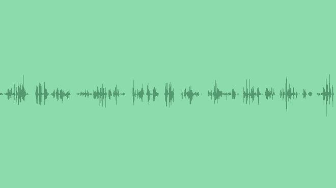Bird Whistling: Sound Effects