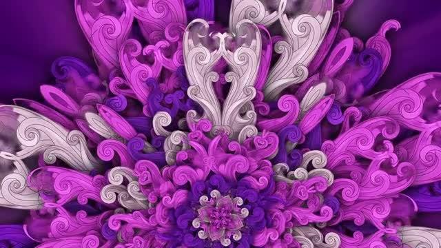 Kaleidoscopic Purple Flowe: Stock Motion Graphics