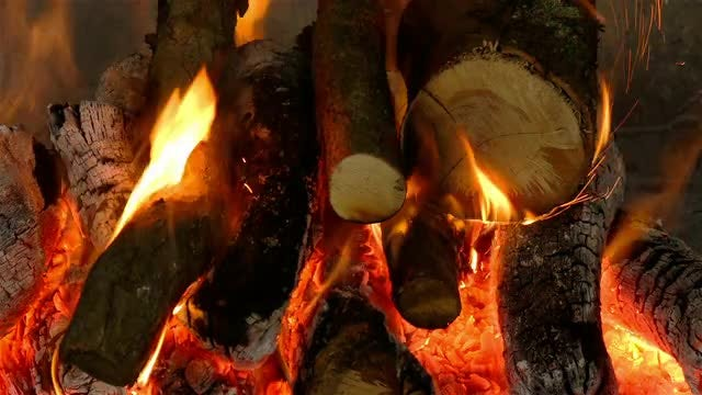 Firewood Burning: Stock Video