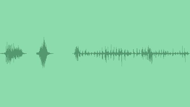 Fantastic Beast 2: Sound Effects
