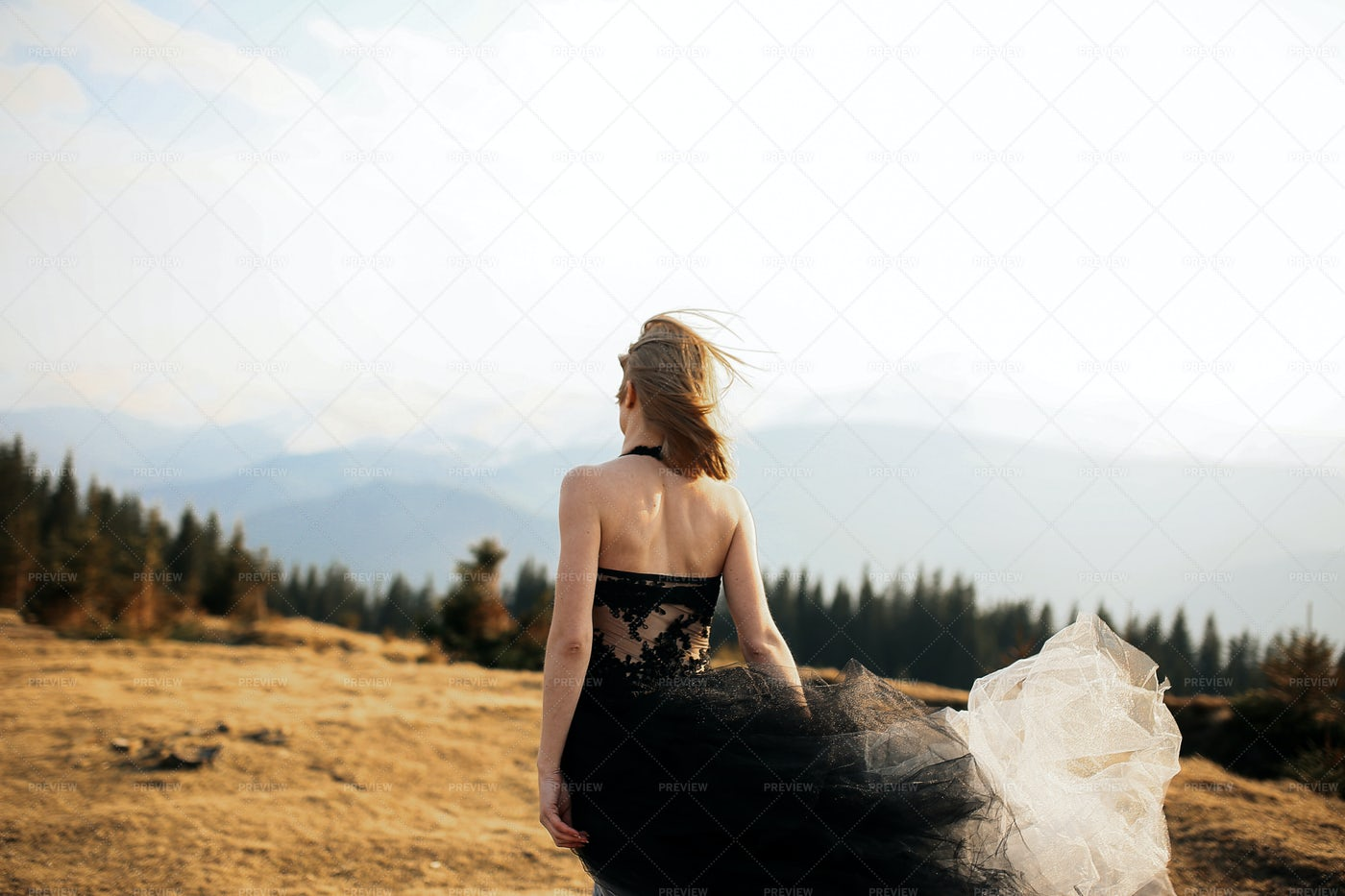 The Bride In Black: Stock Photos