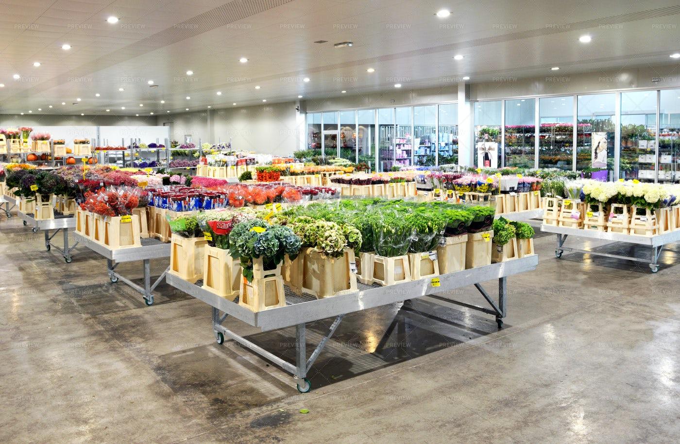 Spacious Flower Shop: Stock Photos
