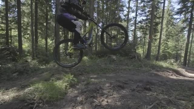 Mountain Cyclist Riding In Forest: Stock Video