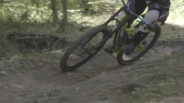 Mountain Biker In The Woods: Stock Video