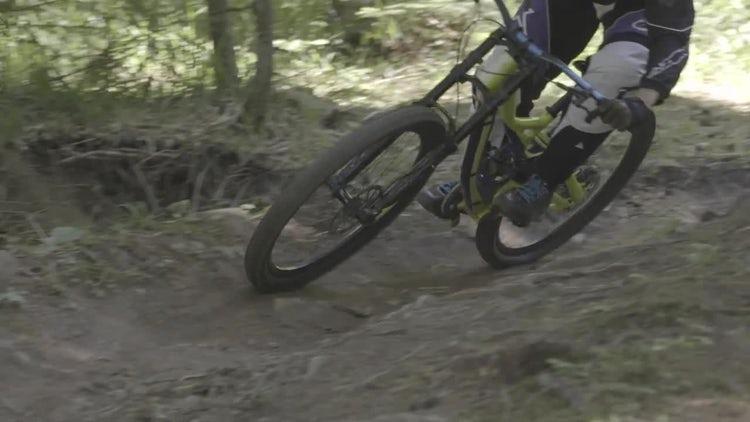 Mountain Biker In The Woods: Stock Video