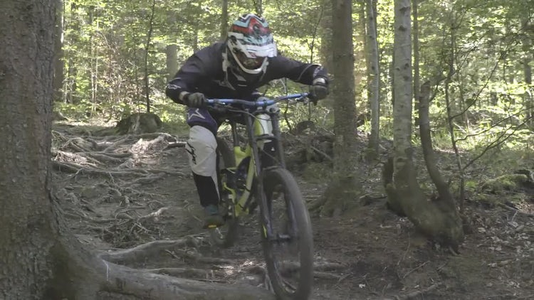 Mountain Biker: Stock Video