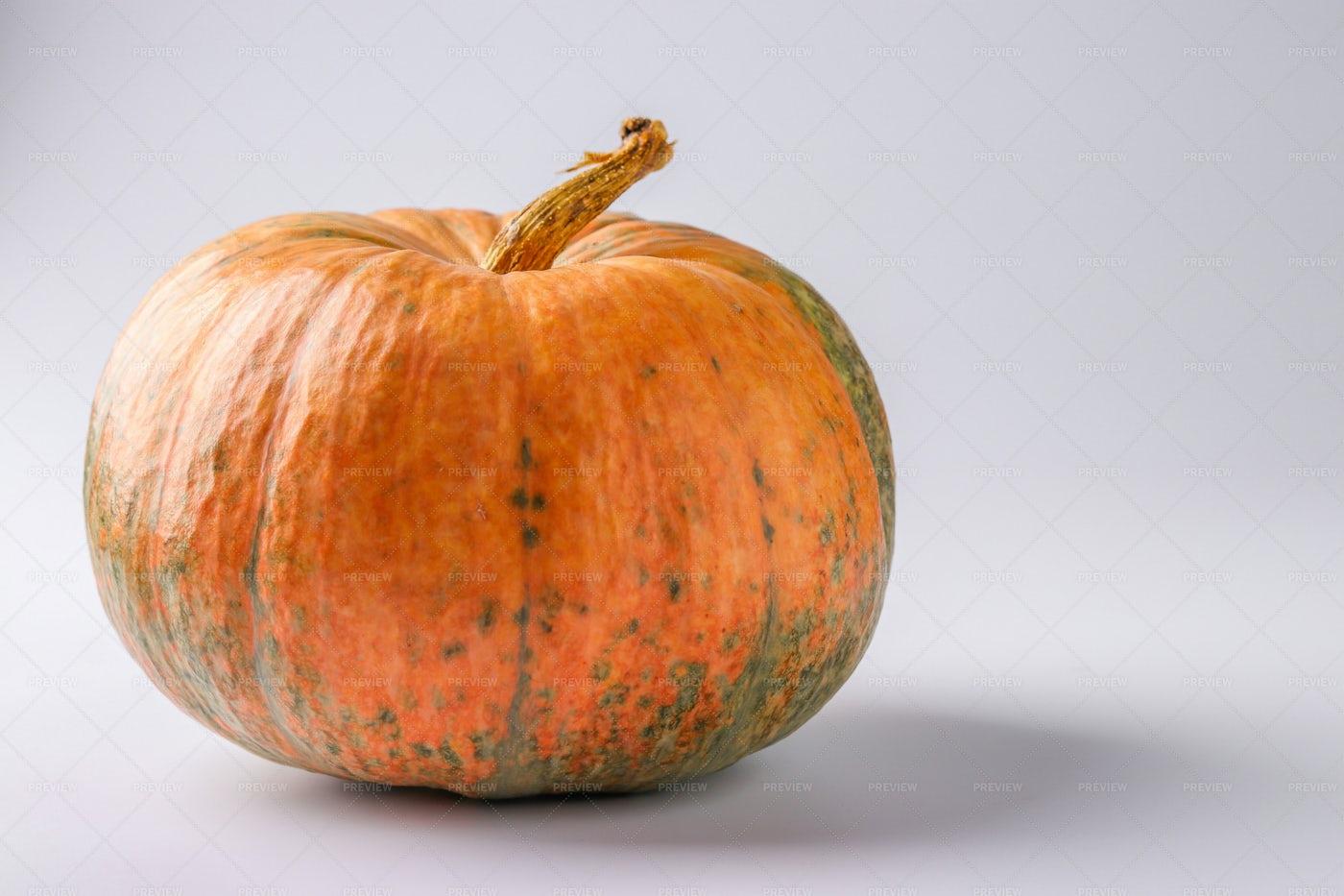 A Single Pumpkin: Stock Photos