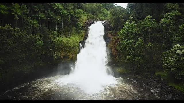 Jungle Waterfall Closeup: Stock Video