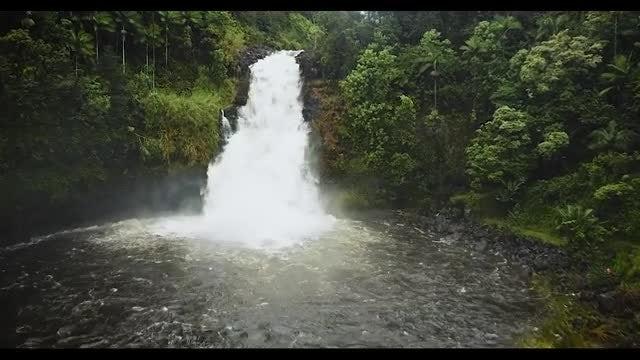 Aerial Shot Of Hawaii Waterfalls: Stock Video