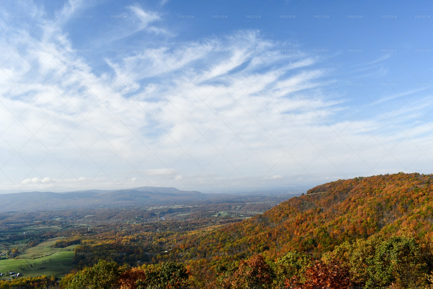 Shenandoah Valley Mountain Forests: Stock Photos